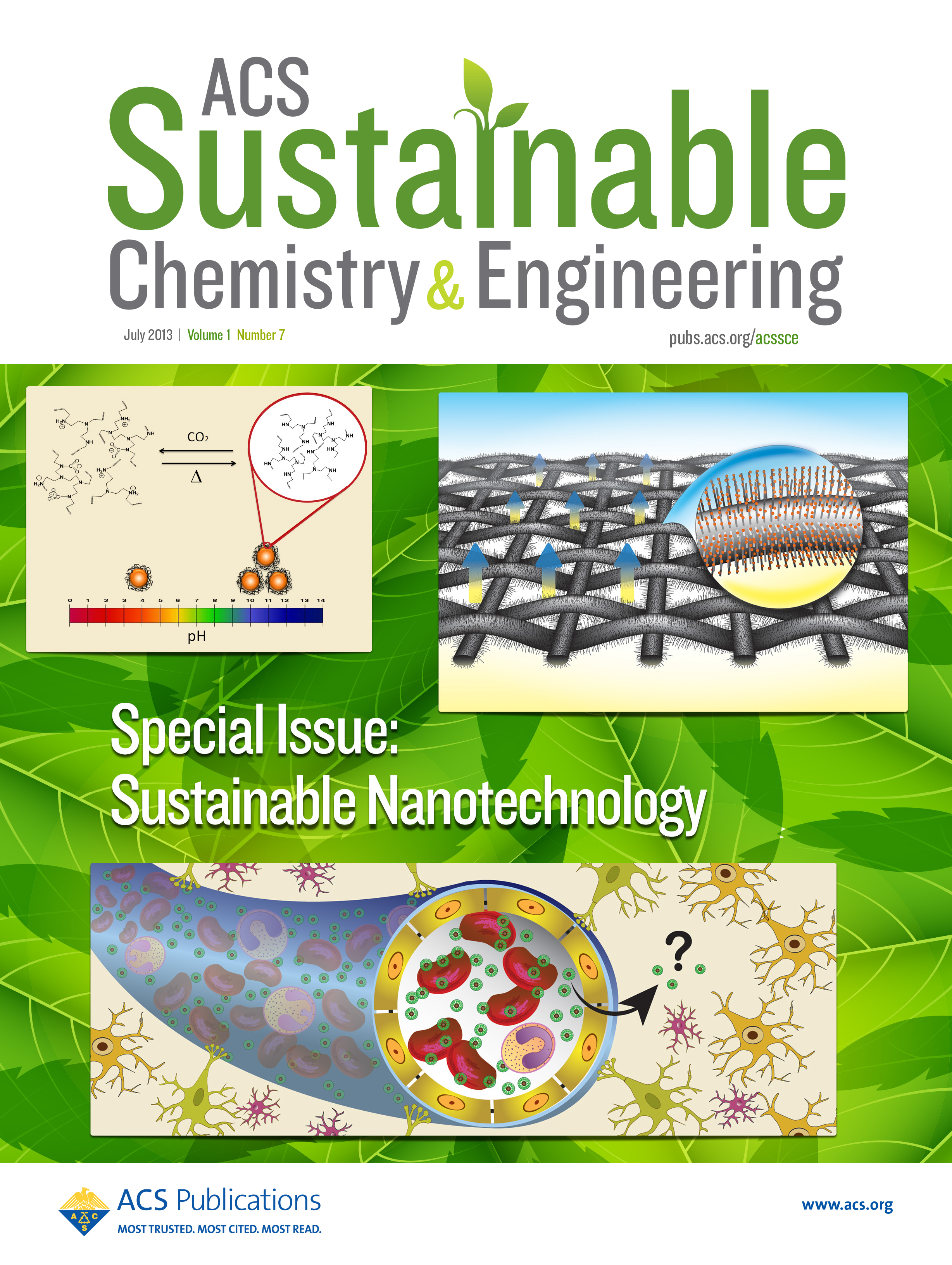 wang_et_al_2_acs_sustainable_cover