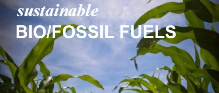 Sustainable Bio-Fossil Fuels
