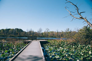 Spicer Lake Nature Preserve